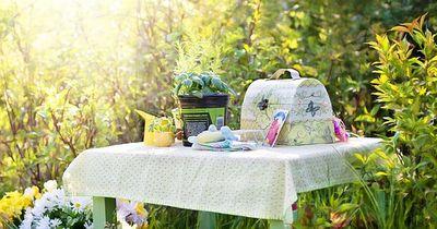 Das perfekte Sandwich - Unbedingt fürs nächste Picknick ausprobieren!