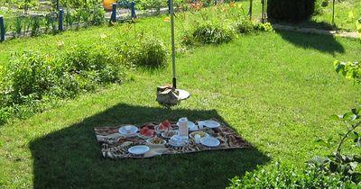Das perfekte Picknick - Diese Dinge dürfen nicht fehlen!
