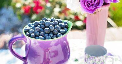 Süßes mal anders - Die gesündesten Obstsorten