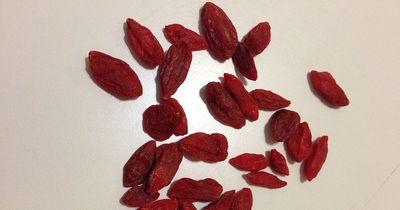 Goji Beere – die kleine Wunderfrucht