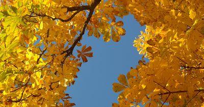 Perfektes Styling für kalte Herbsttage.