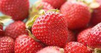 Nutella-Erdbeer-Röllchen