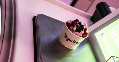 Frozen Yoghurt ganz einfach selbst machen!