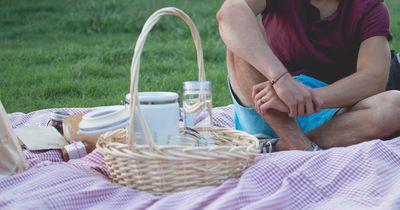 Alles, was du für das perfekte Picknick brauchst!