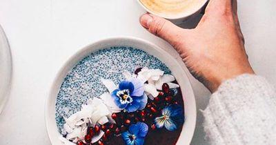 Chia-Samen – dieser Food-Trend hat eine lange Tradition