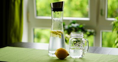 Dehalb solltest du jeden Morgen Zitronensaft trinken!