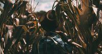 Warum wollen Landwirte kein Bio anbauen?