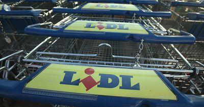So beherrschen Lidl & Co. unseren Lebensmittelmarkt