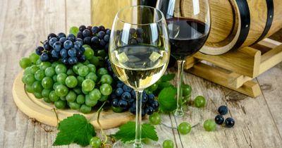 So gut kann günstig sein: Sommerweine im Test