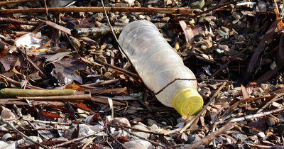 Darum wird aus Plastik kein Kompost