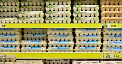 Wie viel Transparenz hat uns die Lebensmittelverordnung wirklich gebracht?