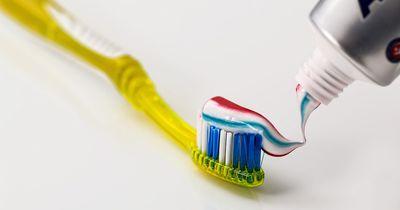 Doch nicht kinderleicht – So putzt du deine Zähne richtig