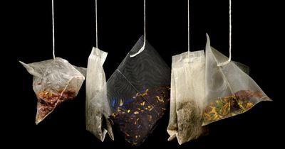Oolong Tee – ein wahrer Fettverbrenner