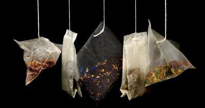 Stiftung Warentest warnt vor krebserregenden Stoffen im Tee
