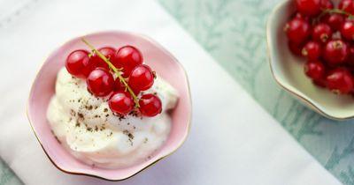 Was ist eigentlich gesünder – Joghurt oder Quark?