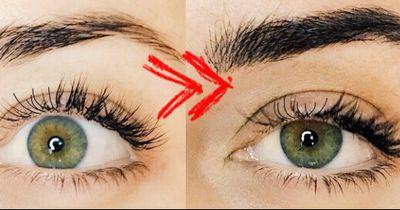 Mit dieser neuen Technik bekommst du die schönsten Augenbrauen!